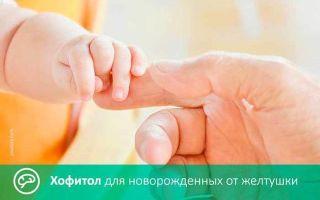«хофитол»: инструкция по применению капель для новорожденных и детей от 1 года с расчетом дозировки