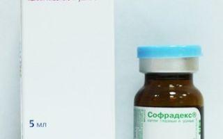 Капли в нос с антибиотиками для детей — разновидности антибактериальных средств от насморка