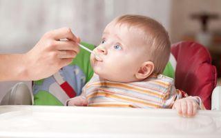 Схема прикорма ребенка в 7 месяцев при грудном и искусственном вскармливании: новое меню и рацион малыша