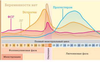 Анализ крови на тестостерон: когда назначают женщинам, в какой день цикла сдавать?