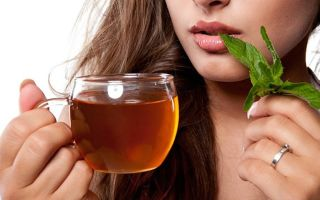 Какое успокоительное можно пить при грудном вскармливании: разрешены ли «глицин», «пустырник» и «персен» кормящей маме?