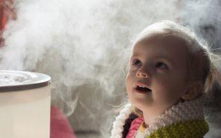 Какой увлажнитель воздуха для детской комнаты лучше — ультразвуковой или паровой: обзор моделей и рейтинг