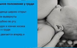 «млекоин» — гомеопатия для улучшения лактации: инструкция по применению и аналоги препарата