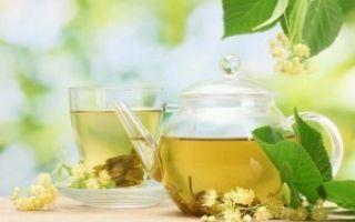 Можно ли кормящей маме перечную мяту: все «за и против» травяного чая при грудном вскармливании