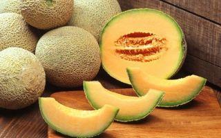 Можно ли кормящей маме кушать дыню: все «за и против» ягоды при грудном вскармливании