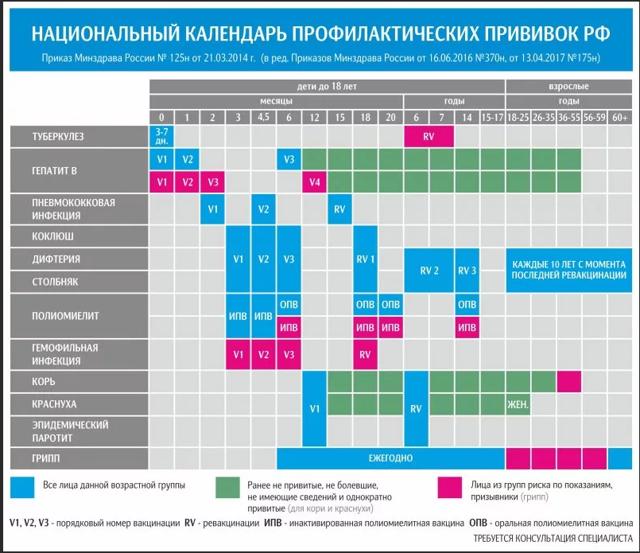 График детских прививок от полиомиелита в россии - схемы вакцинации и ревакцинации