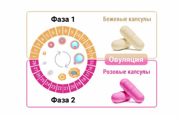 Состав тайм-фактора: показания и возможные побочные эффекты, инструкция по применению витаминов