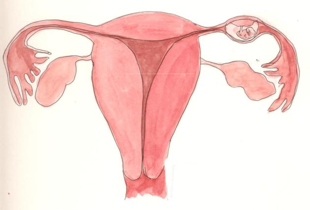 Признаки имплантационного кровотечения: на какой день после зачатия наступает, как отличить от выделений при месячных?