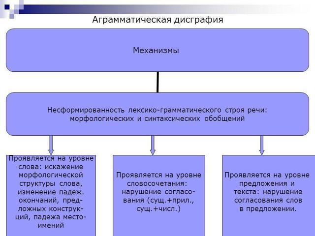 Дислексия у младших школьников: виды, признаки и способы коррекции (обзор игр и упражнений для детей)