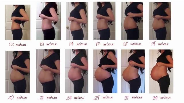 Почему на ранних или поздних сроках беременности живот быстро растет и становится очень большим?