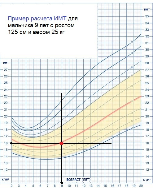 Таблицы роста и веса для девочек по годам: калькулятор, нормы и соотношение показателей в разном возрасте