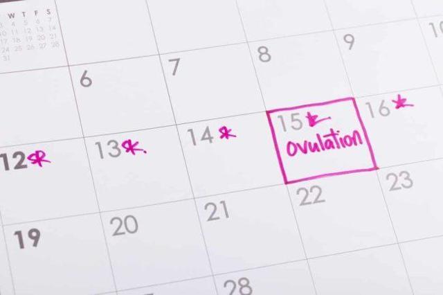 Шансы забеременеть: в какие дни они самые большие, как увеличить вероятность зачатия?