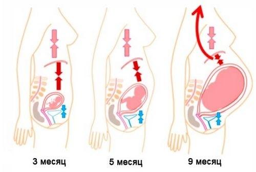 Можно ли во время беременности принимать алмагель, какие формы препарата противопоказаны?