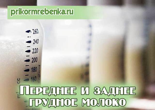 Особенности переднего и заднего грудного молока: состав, калорийность и полезные свойства