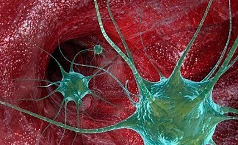 Как делают анализ на дисбактериоз у грудничков: сбор кала и расшифровка результатов