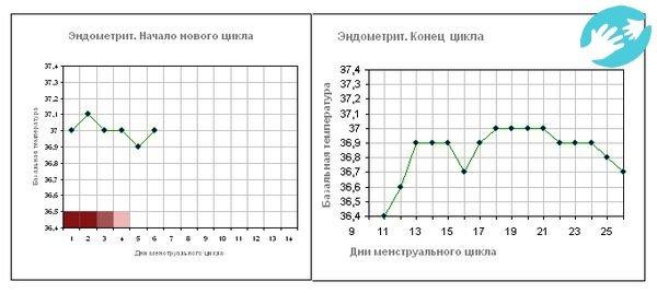 Какие показатели базальной температуры считаются нормальными перед месячными?