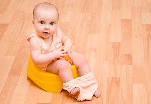 Когда и как приучать ребенка к горшку: определяемся с возрастом малыша, подбираем самый быстрый способ - за 3-7 дней