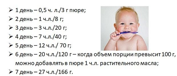 Таблицы прикорма ребенка по месяцам до года: подробные схемы и графики введения продуктов в рацион грудничка от а до я
