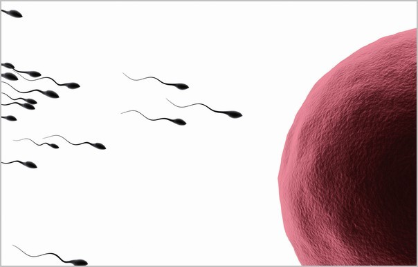 Как можно быстро забеременеть, если ничего не получается: что делать, какая поза самая эффективная для зачатия ребенка?