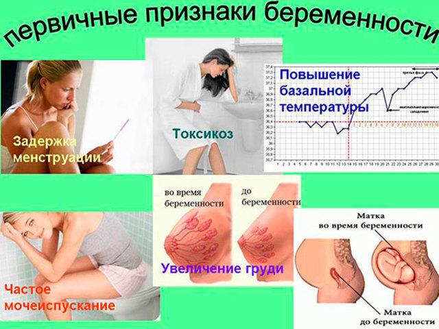 На какой день после переноса эмбриона при процедуре эко тест на беременность покажет две полоски?