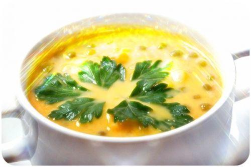 Супы детей от 1-2 лет: 11 вкусных рецептов рыбных, овощных и мясных бульонов