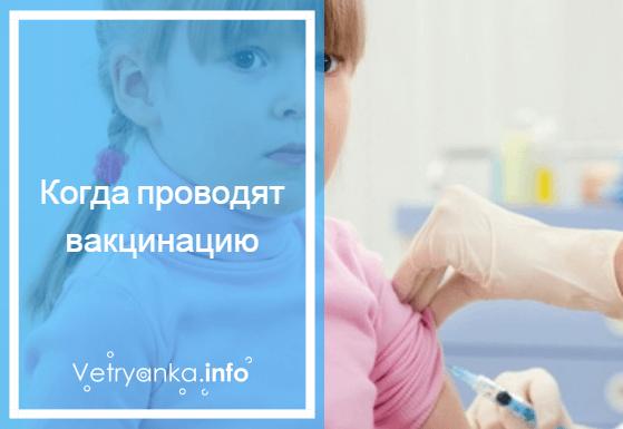 Все о прививке против оспы: когда делают вакцинацию и остается ли шрам?