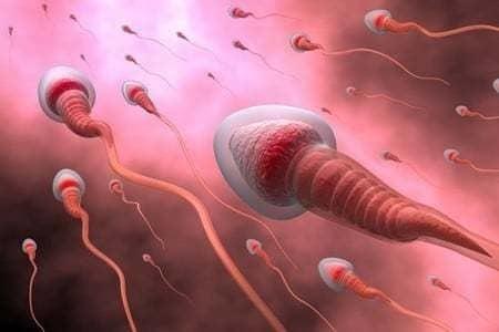 Признаки и причины несовместимости партнеров, влияние на зачатие, анализ на совместимость при планировании беременности