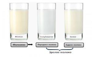 Какого цвета должно быть материнское грудное молоко: