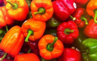 Можно ли кормящей маме свежий и фаршированный болгарский перец: польза сладкого овоща при грудном вскармливании