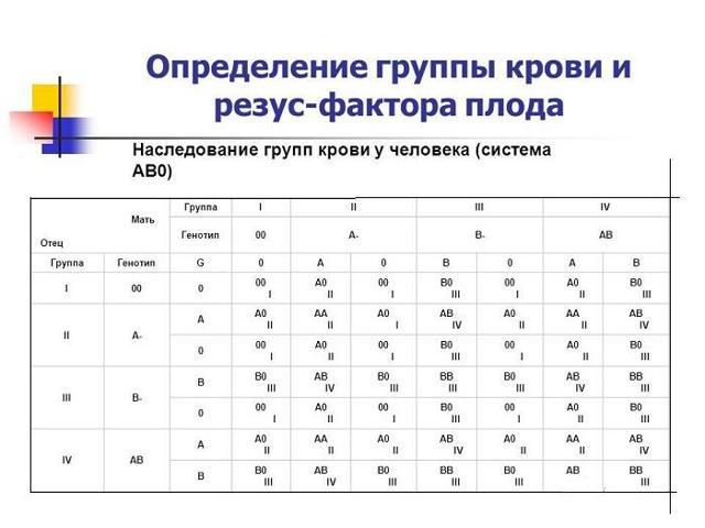 Влияет ли совместимость групп крови на зачатие и пол ребенка: таблица показателей