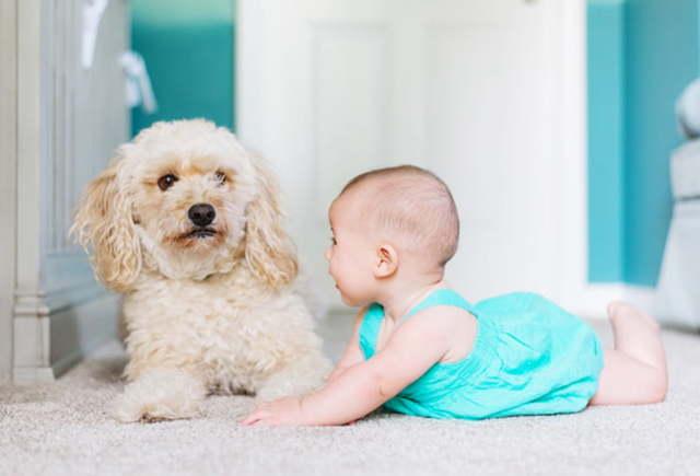 Развивающие игры для детей с 1 года до 2 лет: полезные занятия с мамой и
