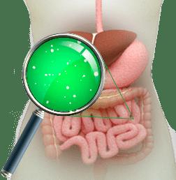 Полисорб при сильном токсикозе и беременности: как принимать на ранних и поздних сроках, есть ли противопоказания?