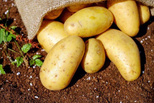 Со скольки месяцев можно вводить картофельное пюре в прикорм грудничка, и как приготовить картошку: простые рецепты