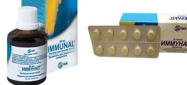 Эхинацея для иммунитета: инструкция по применению настойки, сиропа и таблеток для детей разного возраста