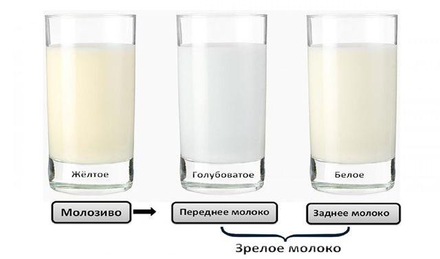 Особенности вкуса и запаха грудного молока: нормы и причины изменений