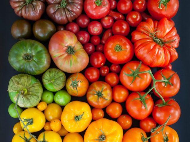 Можно ли кормящей маме кушать помидоры: свежие, соленые и маринованные томаты при грудном вскармливании