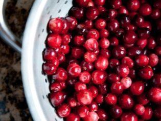 Свойства клюквы, польза и вред ягоды на ранних и поздних сроках беременности, рецепты приготовления морса и компота