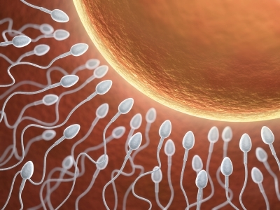 Как правильно подготовиться к беременности после 30 лет, чтобы родить здорового ребенка?