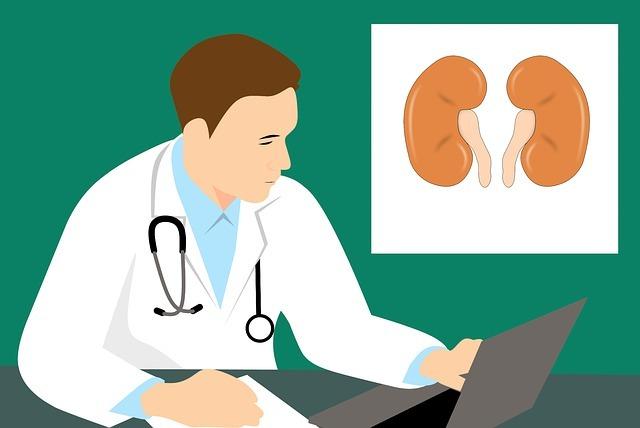 Что значит наличие плоского, переходного и почечного эпителия в моче у детей до года и старше, каковы нормы показателя?