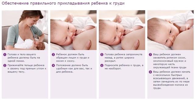 Как прикладывать новорожденного ребенка к груди: правильная техника при грудном вскармливании