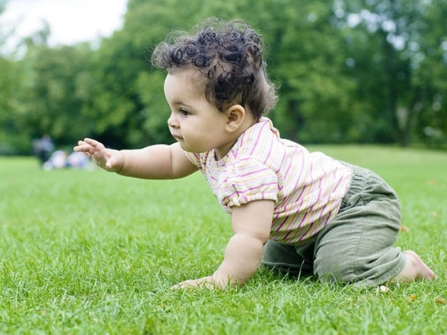 Воспитание и развитие детей с рождения до 1 года: психология младенческого и раннего возраста